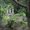 An Asylum of the Past Now Overgrown and Forgotten