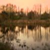 Loxahatchee Sunset