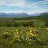 Where the Rocky Mountains Meet the Prairie