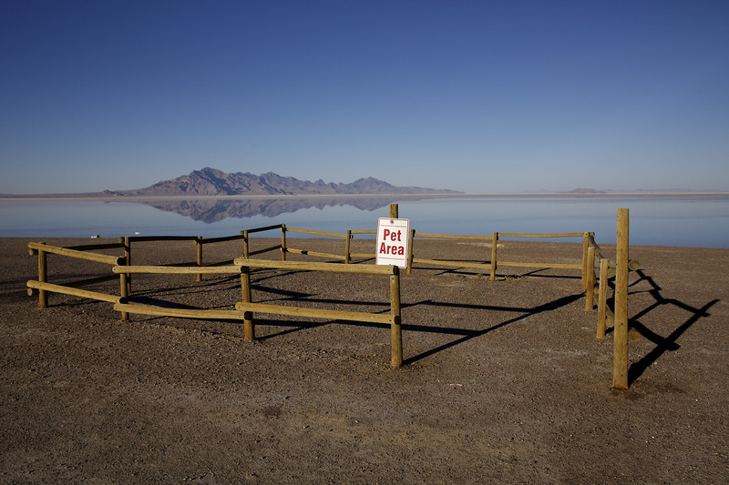 Pet Area.  Bonneville Salt Flats, Utah