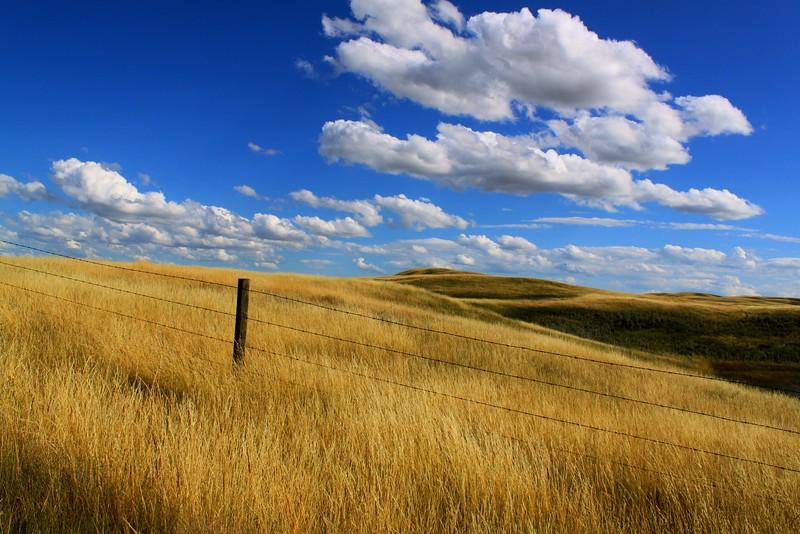 Piece of Prairie