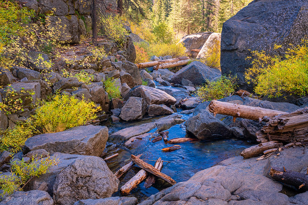 Down The Creek, No Paddle Necessary
