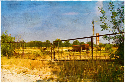 On the Ranch in Muenster, Texas