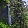 Latourell Falls in the Columbia River Gorge, Oregon.