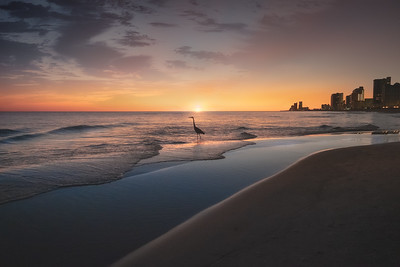 Gulf Coast Sunset - USA