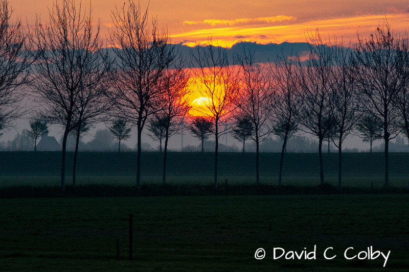 Dutch Sunrise