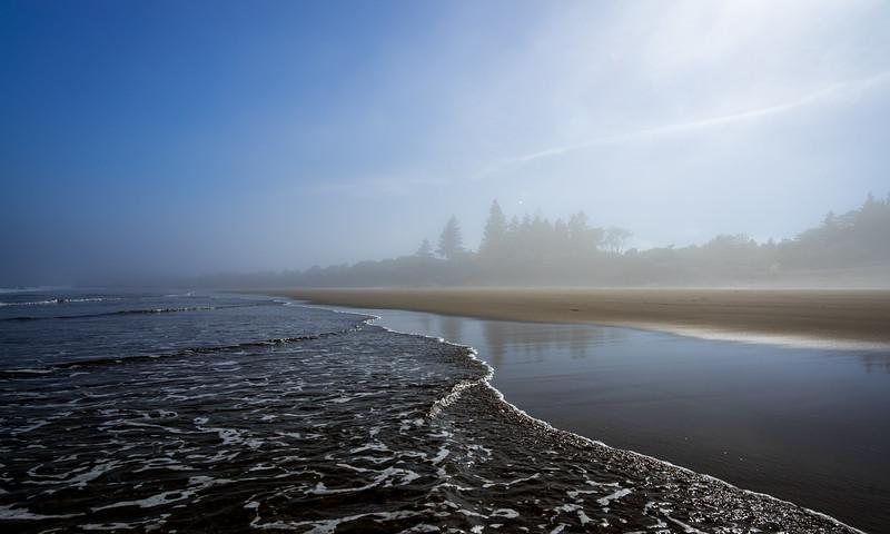 the feel of the fog