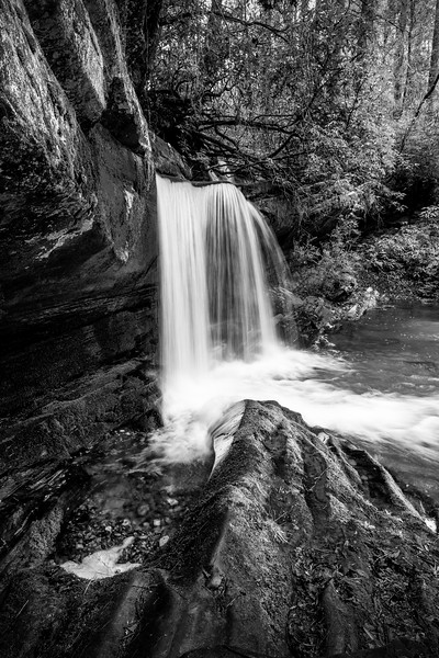 Rapers Creek in Black and White