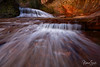 Alcove Fall, The Subway, Zion National Park, Utah