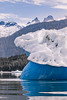 Tidal Iceberg Alaska