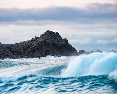 Monterey surf