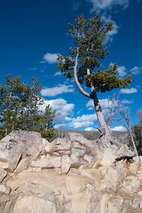 Yellowstone Vacation - Beartooth Pass