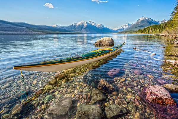 Pintail on lake McDonald