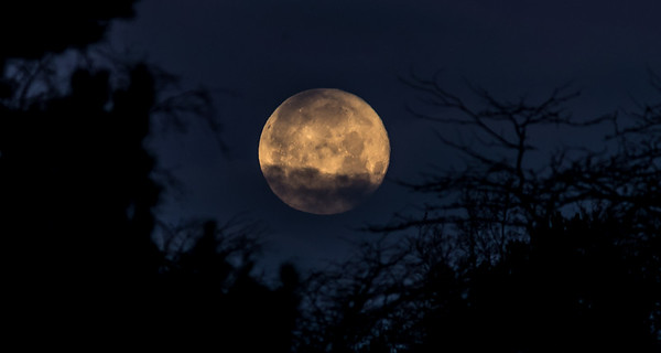 Supermoon in the morning