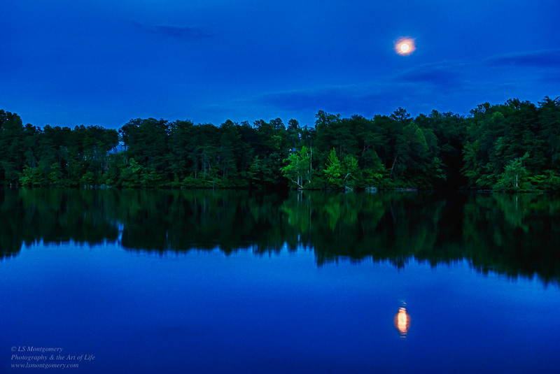 Full Moon During Blue Hour