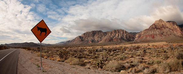 Red Rock Canyon. Nevada.