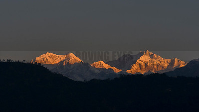 A17:Majestic Mt.Khangchendzonga at sunrise,as seen from Bermiok,a small hamlet in West Sikkim