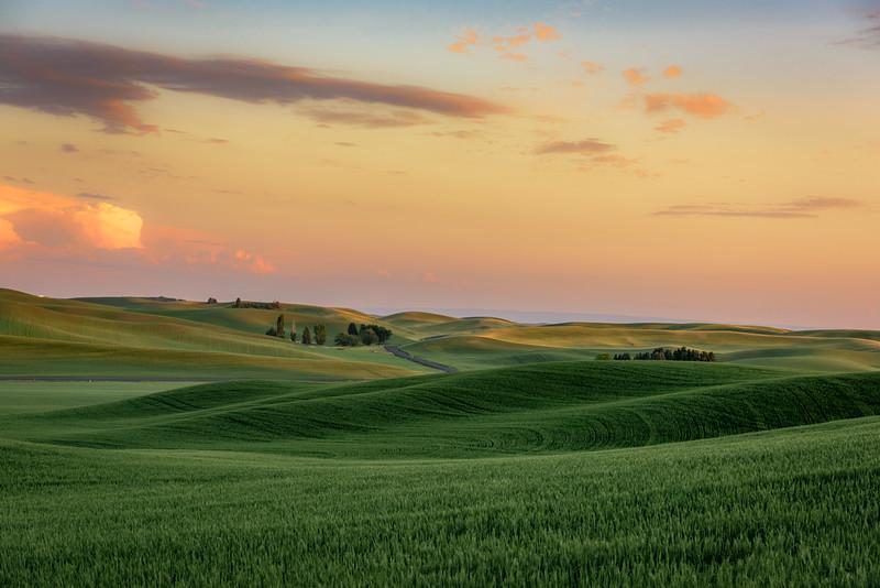 Sunset over wheat fields near Palouse, Eastern Washington State