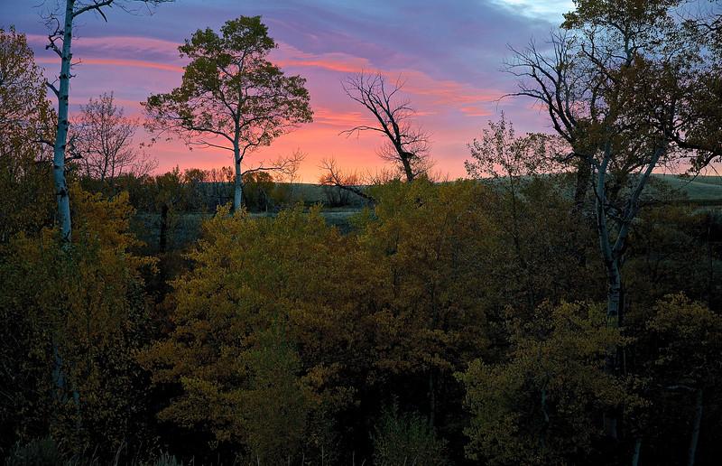Pink Sunrise, Shields Creek Road, Near Livingston, Montana