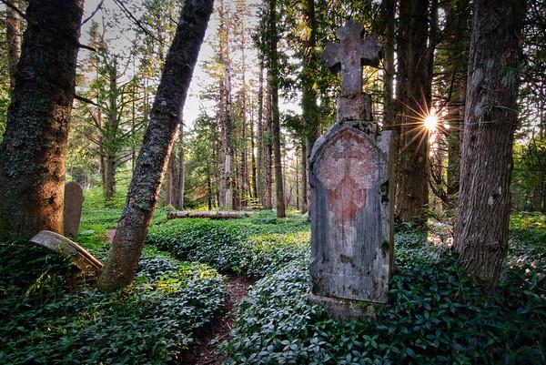 Cliff Mine Cemetery (160)