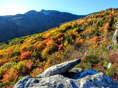 Grandfather Mountain Fall Colors