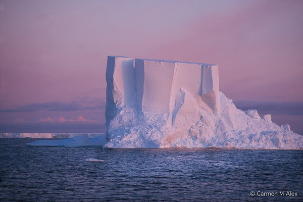Pink Berg, Antarctica