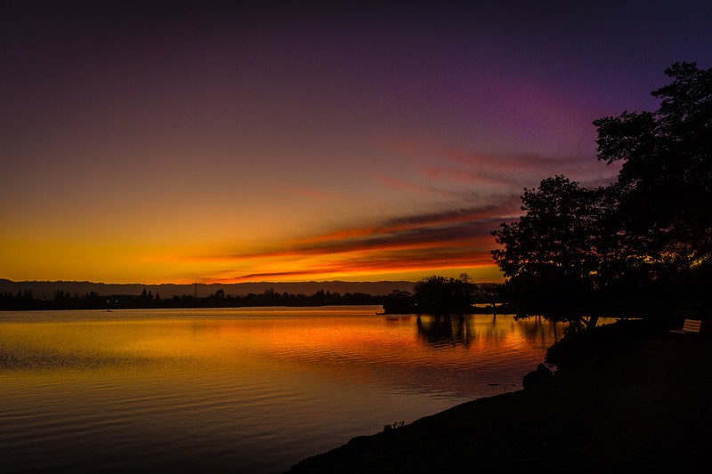 Shoreline Lake Sunset