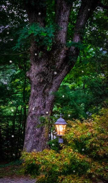 Evening Lamp and Fireflies