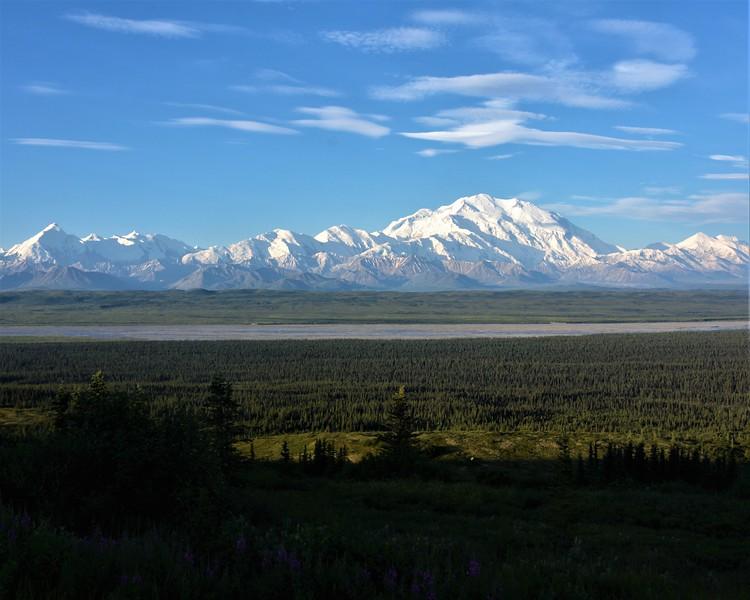 Denali, aka Mt. McKinley, viewed from the park road at about 8AM, Denali National Park, Alaska