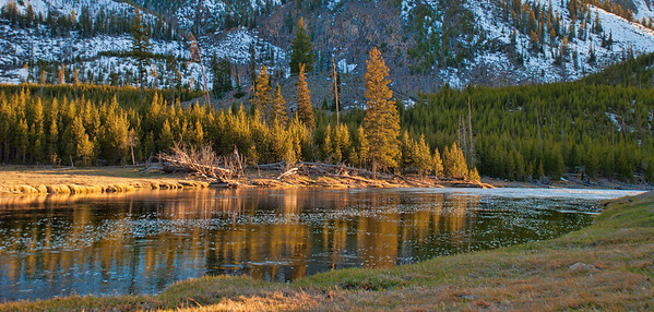 July 26 - Evening light on part of the Madison River, Montana<br /> <br /> Thanks for all your comments on my Anyone Home? image the day before yesterday!  They are all so much appreciated.  I wasn't able to post yesterday!