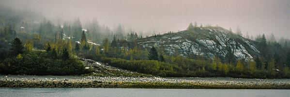glacier bay ...