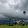 Mwagusi storm scape