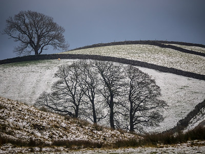 snow landscape near Hawes,Yorkshir    copyright photographyinyorkshire.co.uk
