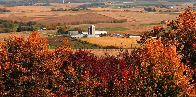 Wisconsin fall farm