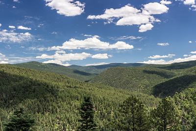 Norther New Mexico Forests