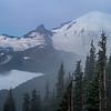 Mt. Rainier from Sunrise