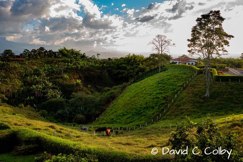 Estrella del Monte Hacienda