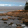 Pacific Grove Seascape