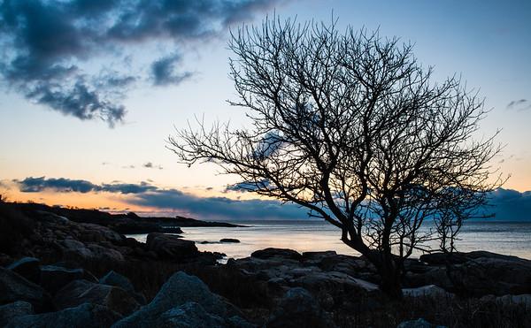 Sunrise - East Point Wildlife Sanctuary, Biddeford, ME