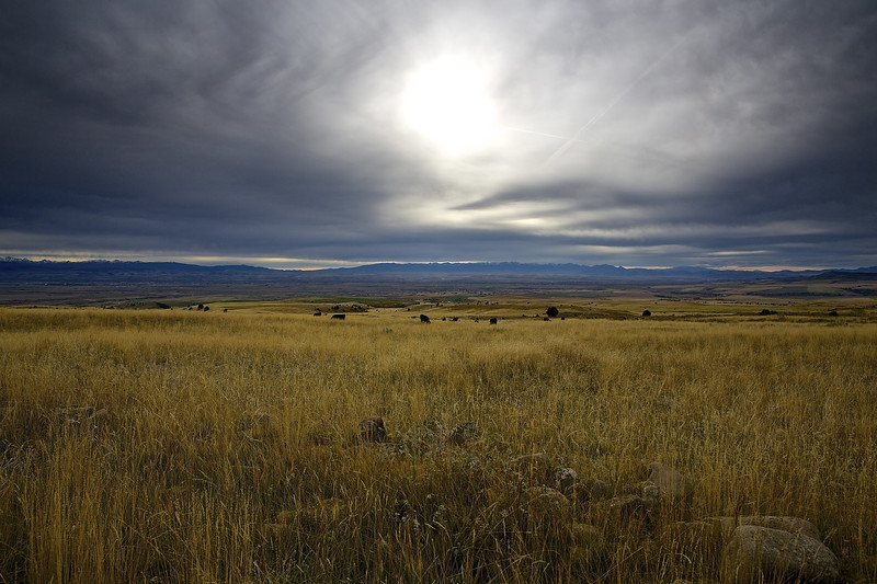 Vista.  Bozeman, Montana In The Distance