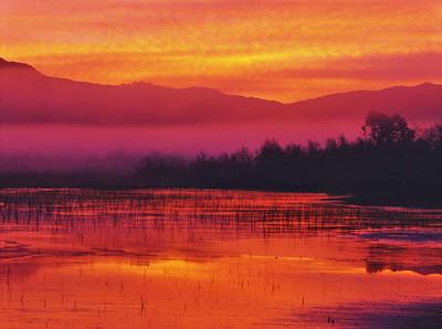 Sunrise, Lake Hodges, Escondido, Ca