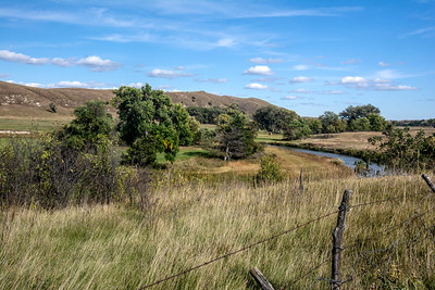 The Middle Loup River winds through the Sandhills region of Nebraska, nourishing a green riparian area along its banks. The Sandhills region supports large ranches that grow huge herds of cattle and bison.