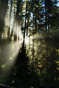 Water droplets are suspended mid-air above the Sol Duc River during the setting Sun