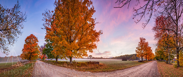 Fall Sunrise at Muster Field Farm