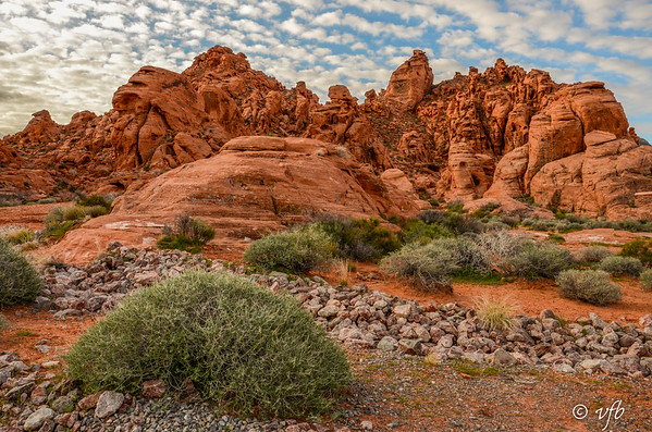 Valley of Fire Morning