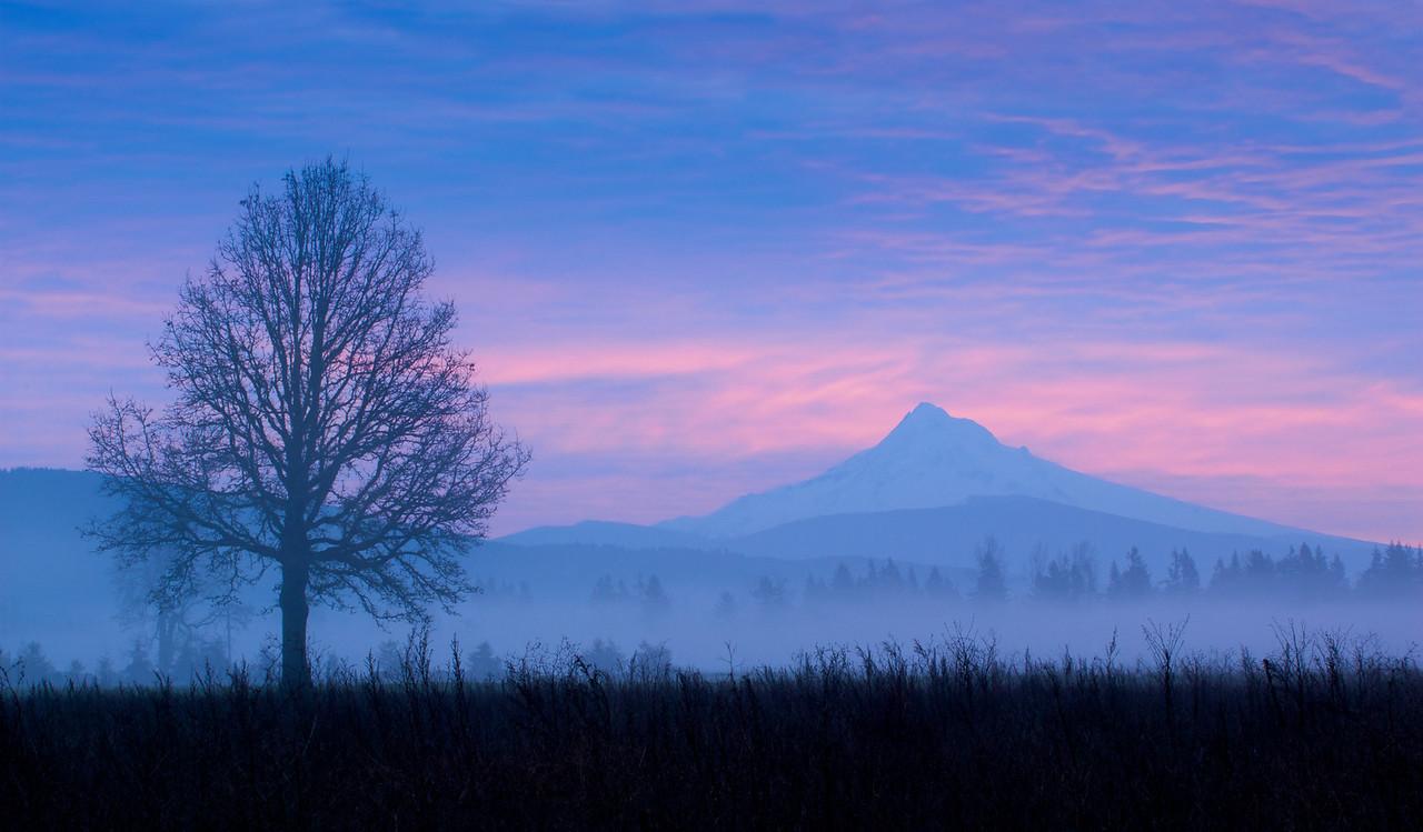 Mount Hood in Early Morning Fog – Battle Ground, Washington