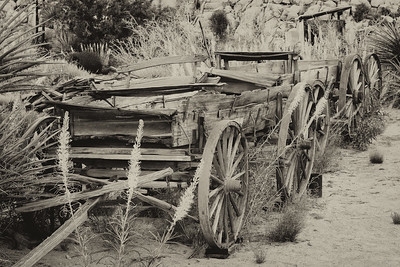 Key's Ranch Joshua Tree NP. Decaying buckboards from the late 1800s.
