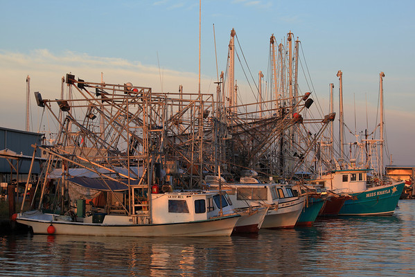 OYSTER AND SHRIMP BOATS