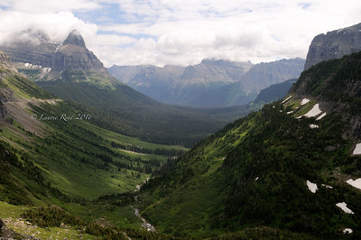 Glacier National Park vista.