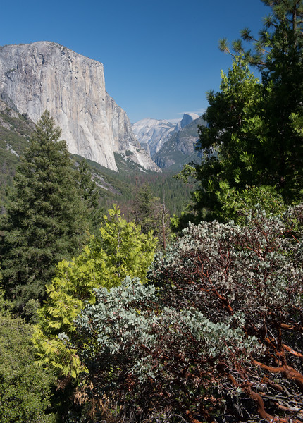 El Capitan, Tunnel View, Yosemite National Park, California